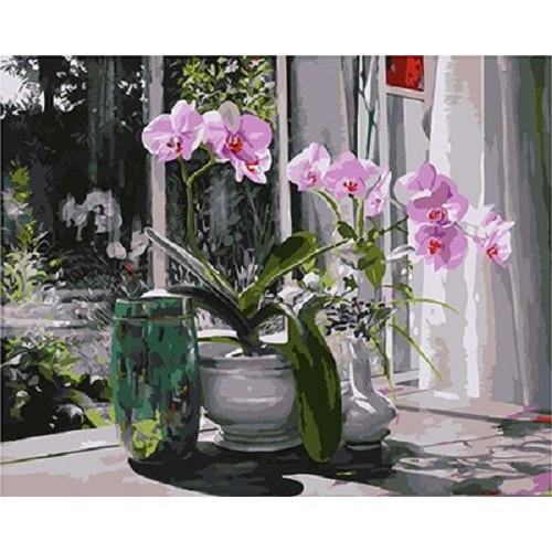 Орхидеи на прозареца